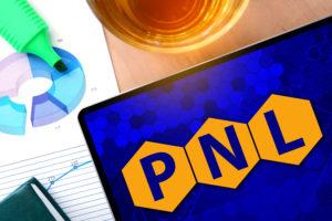 Maître Praticien certifié PNL